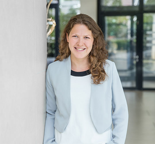 Mirja Spielvogel, Evolving Systems Consulting